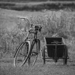 En balade ***--+°--°° (Titole) Tags: squareformat bicycle noiretblanc blackandwhite nb bw titole nicolefaton 15challengeswinner unanimouswinnershowdown challengegamewinner gamex2 storybookttwwinner