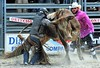 P9020010 (David W. Burrows) Tags: rodeo cowboys cowgirls horses bulls bullriding children girls boys kids boots saddles bullfighters clowns fun