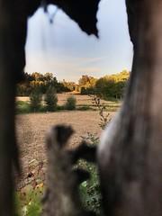 (fábiosilva20) Tags: life lige september monday sunday nature wild natureza