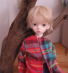 Julian (Wolfboy141) Tags: dim dimdoll dollinmind larina julian msd bjd happy hybrid soom ns little gem