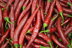 Tabasco (Kirlikedi) Tags: burner chilipepper fresh green pain pepper plant pointed red vegetables