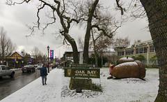 20161217 Pam in Oak Bay (Robert Harwood) Tags: oakbay victoria vancouverisland britishcolumbia canada acorn sculpture