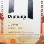 Dan examens 2013