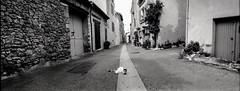 Provence 07 2017008 (Patrick.Raymond (3M views)) Tags: 04 haute provence valençole plateau lavande argentique mallefougasse lomography tmax horizon perfekt