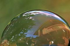 P9120019 (hugoholunder) Tags: seifenblase haus natur flickr blume