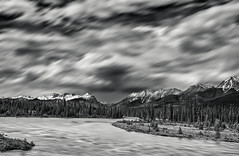 Kootenay River, Mount Daer, Mount Selkirk (martincarlisle) Tags: kootenayriver mountdaer mountselkirk kootenaynationalpark britishcolumbia canada canadianrockies rockymountains rockies nationalparks parks mountainparks rivers water trees mountains sky clouds blackandwhite monochrome olympuse500 capture1pro9 niksoftware silverefexii bestshotoftheday nwn innamoramento