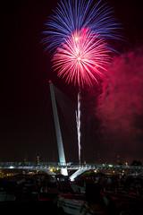 Fireworks (Lady_Adler) Tags: laspezia liguria fuochi fuochidartificio fireworks summer night nightphotography bulb longexposure estate notte golfo palio paliodelgolfo 2017