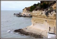 Falaises de MESCHERS (Les photos de LN) Tags: paysage nature falaises calcaire roches littoral carrelets meschers nouvelleaquitaine charentemaritime estuaire gironde