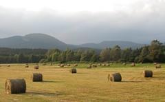 un soir d'été (2) (b.four) Tags: foins fieni hay lamartre var coth5 ruby5 ruby10