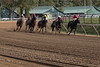 Turning For Home, at The Spa (bobfromnewhaven) Tags: saratoga nyra bobfromnewhaven race track