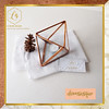 ✨DOMINIQUE GLASS BOX CONTAINER TRIANGLE DIAMOND✨ (luxeova) Tags: luxeovaringbox terrarium terrariums glassbox wedding weddings ring terrariumlove ringholder homedecor weddingbox rusticwedding ringbox ringbearer geometricbox jewelrybox homedesign jewellerybox glassterrarium glassflowers candleholder weddingrings candleholders glassvase glassplanter geometricdecor geometricterrarium australianwedding ukweddings londonwedding luxeovahomedecor