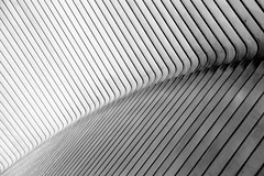 Liège-Guillemins railway station abstract: part 2 (jbarry5) Tags: liègeguilleminsrailwaystation liegestation calatrava calatravatrainstation belgium travelphotography travel blackandwhite monochrome abstract geometry liegecalatrava liegerailwaystation liegetrainstation