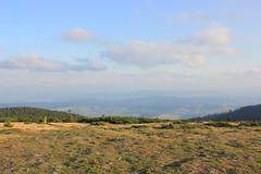 Widok z Pilska (magro_kr) Tags: słowacja slowacja slovakia slovensko beskidżywiecki beskidzywiecki beskidy góry gory przyroda natura widok krajobraz sceneria mountain nature view scenery landscape