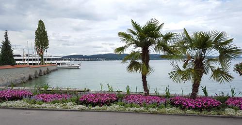 German Riviera
