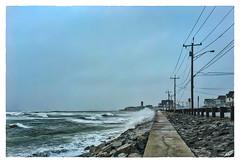 Checking on José (Timothy Valentine) Tags: brantrock large clichésaturday surf beach rain 2017 0917 marshfield massachusetts unitedstates us