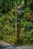 Man in the Mirror - Walk to Totsuka JRC 20170725 (Rick Cogley) Tags: 2017 cogley fujifilmxpro2 60mm 1500sec iso200 expcomp37 whitebalanceauto noflash programmodemanual camerasnffdt23469342593530393431170215701010119db2 firmwaredigitalcameraxpro2ver310 am tuesday july f56 apexev140 focusmodemanual lenstypexf60mmf24rmacro day summer hot yokohama totsuka kanagawa japan jp