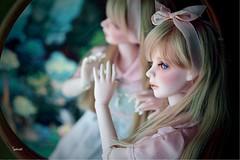 Go ask Alice... (assamcat) Tags: catriona dollmore bjd abjd msd alice canon