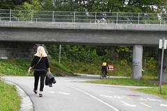 Sykkelveg Stavne 0070 (Miljøpakken) Tags: miljøpakken trondheim sykkelveg sykling sykkelrute syklister myke trafikanter