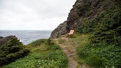 Waiting for Me D7C_4422 (iloleo) Tags: bench newfoundland canada landscape bottlecove summer nature coastline nikon d750 path ocean
