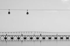 Over the river (JOAO DE BARROS) Tags: joão barros monochrome