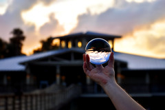 Glass Ball Green Cay (BMADHudson) Tags: glass ball green cay crystalball glassball greencay greencaynaturecenter greencaywetlands grass buildings southflorida silhouette sky sunset sun sflwetlands florida floridaphotography floridawetlands floridasunset colorful clouds calm round reflection reflective shiny flickr september october october12017 2017 hand clear sharp blurry outdoor outside colors prettysunset water lake trees lights sunlight red orange yelloq yellow blue cloudy contrast bmadhudson