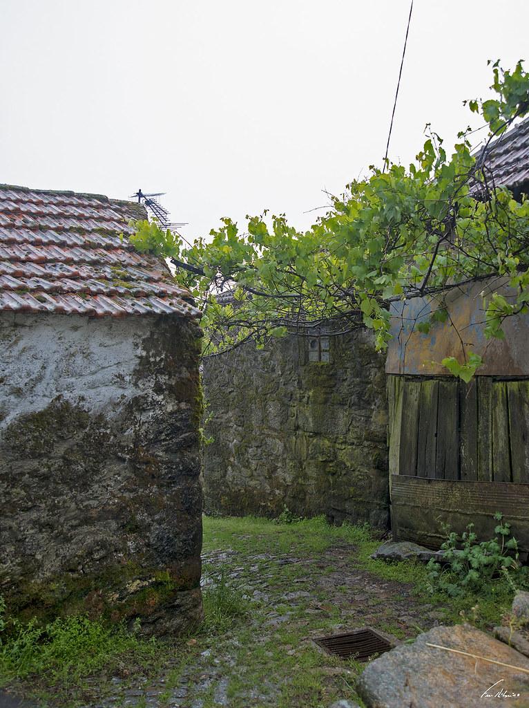1600-paredes (169)