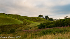 Hobbit hole (RCB4J) Tags: ayrshire landscape rcb4j ronniebarron scotland sonydt1870f3556 sonyilca77m2 art countryside irvinevalley light morning photography naturethroughthelens
