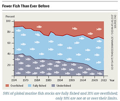 Fewer Fish Than Ever Before (boellstiftung) Tags: oceanatlas climatechange pollution sea ocean heinrichboellfoundation maritimeindustry shippingindustry overfishing ecosystem biodiversity