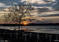 E la sera bussò.... (Pablos55) Tags: bracciano lago tramonto sole lake sunset sun albero tree