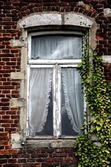 A Sunday Walk # 6 Bordingenhof Window (just.Luc) Tags: hederahelix klimop lierregrimpant fenêtre fenster venster raam window curtains gordijnen rideaux farmhouse farm boerderij ferme vlaamsbrabant vlaanderen flanders flandres bierbeek