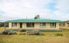 171 Back Creek Road, Young NSW