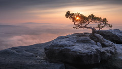 Saxon Swiss National Park (christian.denger) Tags: saxon swiss national park rock sunset canon canon1635f4 landscape