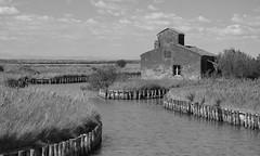 Comacchio - Ferrara - Italy (Mauro e Irene) Tags: landscape bwlandscape comacchio acqua water agua italy italia ferrara paesaggio nikon d3100
