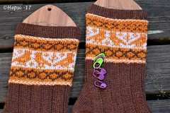 2017-08-04 Kanteletar (5) (hepsi2) Tags: tds2017 tds2017kanteletar kanteletar socks sukat colorwork strandedknitting