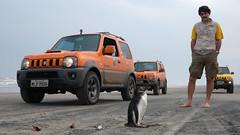 Pinguim Gaúcho (João Ebone) Tags: suzuki jimny laranja pinguim litoral norte rs gaúcho darci tartari praia areia