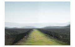 v e r t i g i n o p o r t a l (creonte05) Tags: eduardomiranda explore flickr nikon d7100 2017 color paisaje chile verde curico landscape icm ngc yourbestoftoday