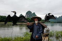 Pêcheur avec ses cormorans à Xingping. (Gilles Daligand) Tags: chine china xingping guangxi rivière li liriver pêcheur fisherman cormorans cormorants crépuscule heurebleue sunset leica q