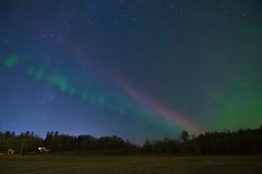 A visit from Steve (Len Langevin) Tags: aurora borealis northernlights steve atmosphericphenomenon light night sky longexposure alberta canada nikon d7100 tokina 1116