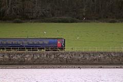 Dawlish to Exeter train - Exe River Cruse, Exmouth, Devon - Feb 2017 (Dis da fi we (was Hickatee)) Tags: river exe cruise exmouth devon dawlish exeter train greatwestern gwr railway rail track line