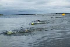 "I Mityng Triathlonowy - Nowe Warpno 2017 (149) • <a style=""font-size:0.8em;"" href=""http://www.flickr.com/photos/158188424@N04/36465619970/"" target=""_blank"">View on Flickr</a>"