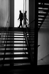 L'ai-je bien descendu ? (cactus2016) Tags: contrejour escaliers noiretblanc silhouettes blackandwhite ecosse glasgow technique thèmes