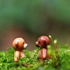 Ursine love (Thecameralooksbothways) Tags: legominifigure legominifig lego teddy macro olympusem10 olympus 60mm