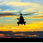 H-36 Caracal thumbnail