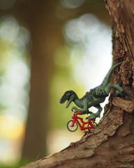 Lenny totally rockin' it on the tree trunk half pipe! . #lennyraptor #legonofilterfriday #bokeh #bokehliscious #bikerraptor #lego #minifiguresbigworld #afol #legominifigures #toyslagram_lego #instalego #legostagram #brickcentral #legoart #legography #lego (JoeCow) Tags: ifttt instagram