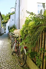 (victoriapss) Tags: summer salzburg austria osterreich bike bikes green fence garden urban city explore sightseeing photography canon 1200d day light street aestetic