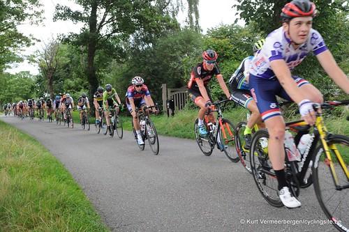 Omloop Vlaamse gewesten (310)