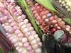 México, tendres couleurs du maïs (Voyageur74) Tags: elote perla azul rosado rose pearl méxico mexique valledeméxico perle opalescent tendre bleupâle rosé maïs maíz corn pink pinkish paleblue