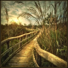 """From the series""""Walks in Italy"""" Viareggio.Evening. (odinvadim) Tags: iphoneography textures travel iphoneonly mytravelgram snapseed textured landscape painterlymobileart iphoneart"""