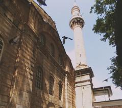 Emir Sultan Mosque/Eid Mubarak! (yldrmeda) Tags: birds flying historical bursa emirsultan mosque muslims eid mubarak