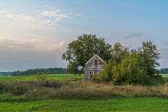 (Daniel000000) Tags: old house shack wisconsin trees sky clouds light sunset home tree landscape antique green summer evening horizon